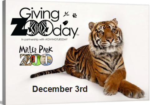 Giving Zoo Day 2019