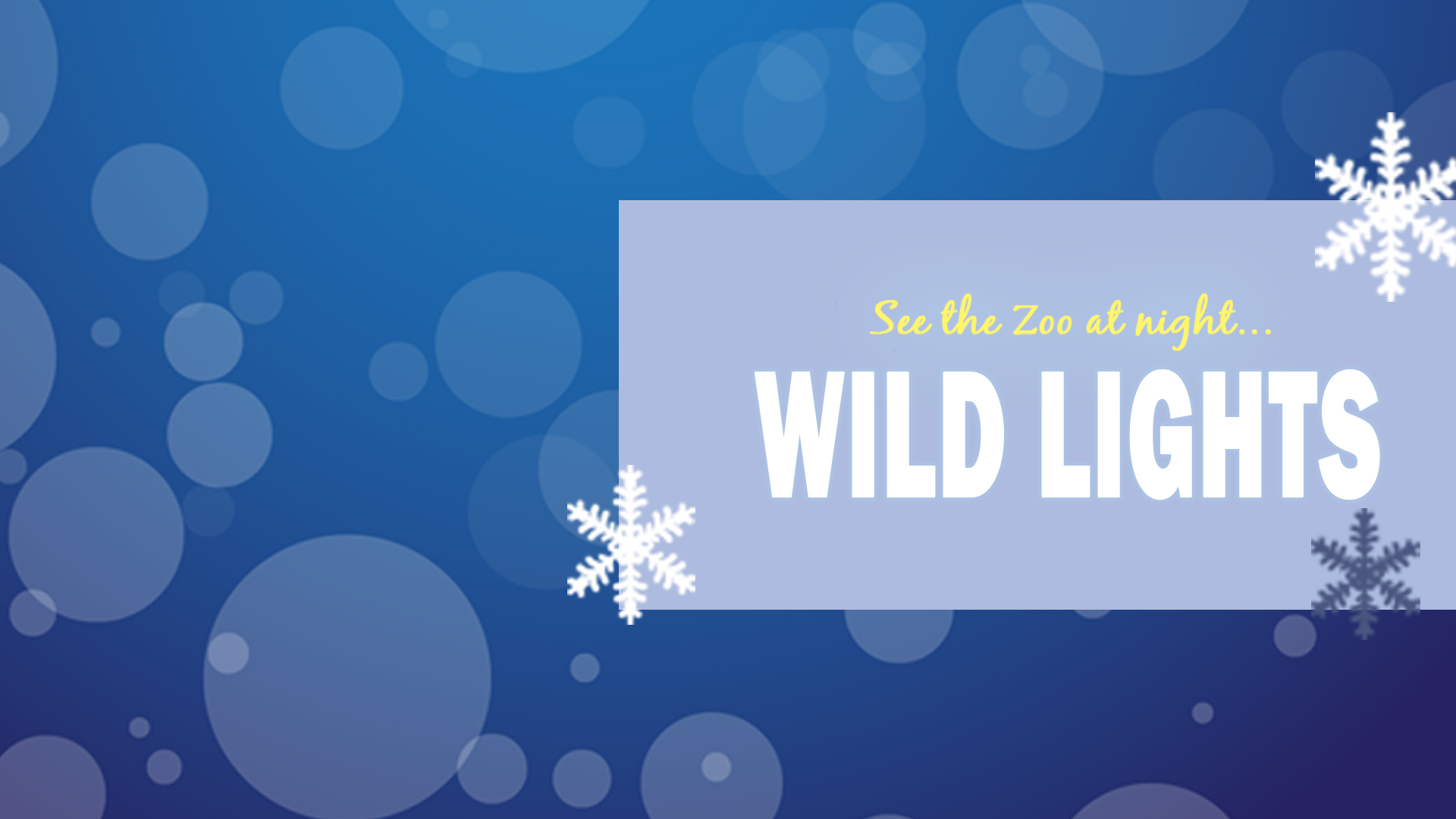 Wild Lights_FB event