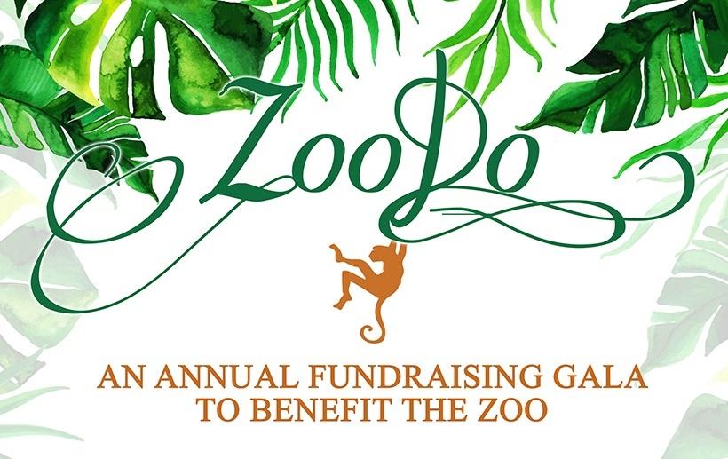 Zoo Do 2021